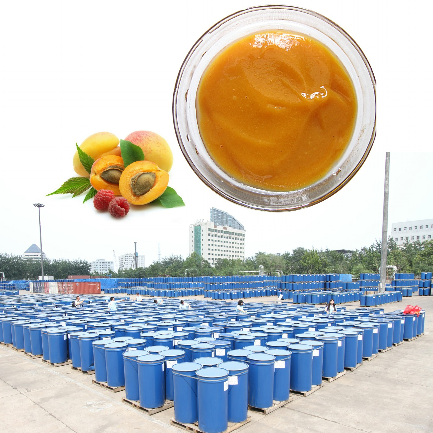 Fruit Puree Concentrate